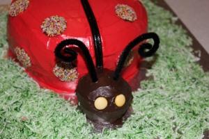 Evie Lattimre, 1st-Birthday Ladybird Cake